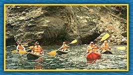 Description: Description: http://web.cba.neu.edu/~mzack/kayak1.jpg
